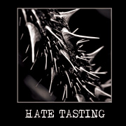 VARIOUS ARTISTS - Hate Tasting CD