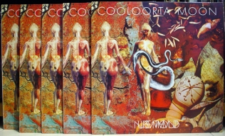NURSE WITH WOUND - Cooloorta Moon 12%22 (Mirror Three) (4iB Records)